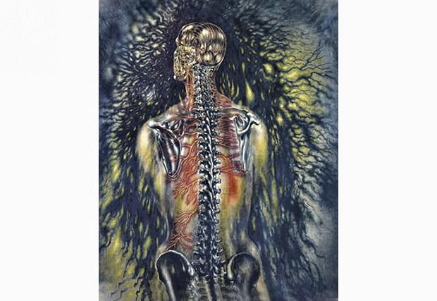 Back Pain Myth Busting Part3