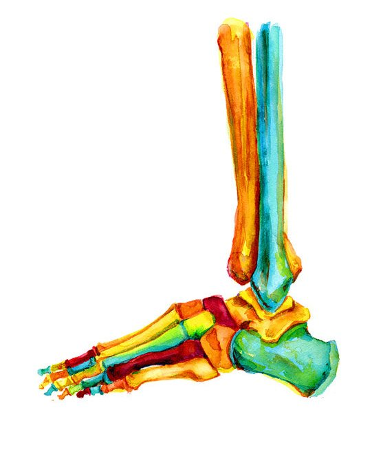 Recovering from an ankleinjury